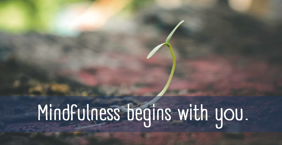 .begin eight-week mindfulness course mindfulness begins with you